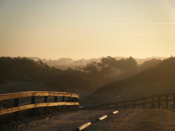 Sunrise Messanges
