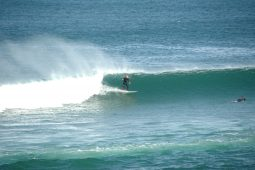 guide surf trips